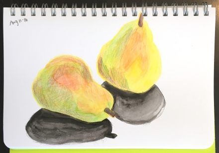 drawing of two pears