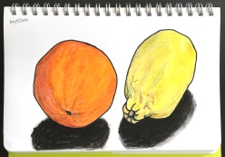 drawing of an orange and a lemon